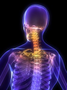 The Cervical spine: physiotherapy for back pain
